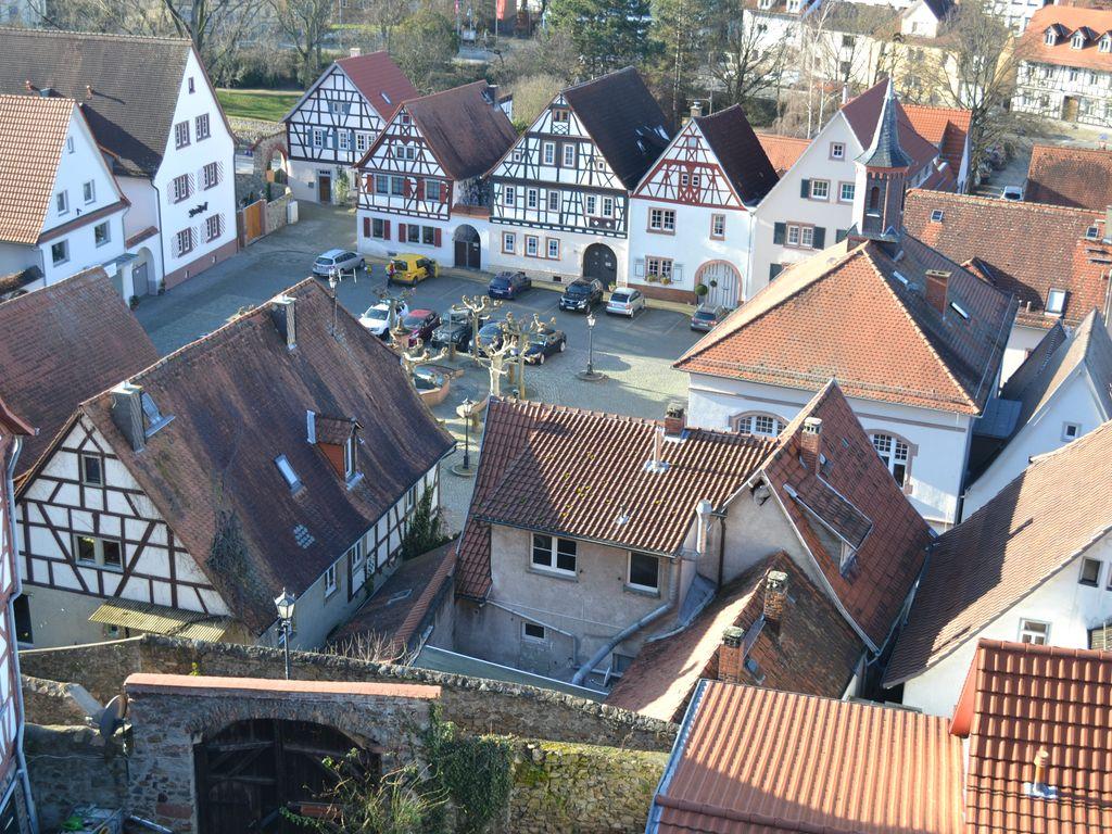 Blick über Zwingenberg