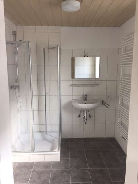 Single-Appartement renoviert und zentral in Wolnzach