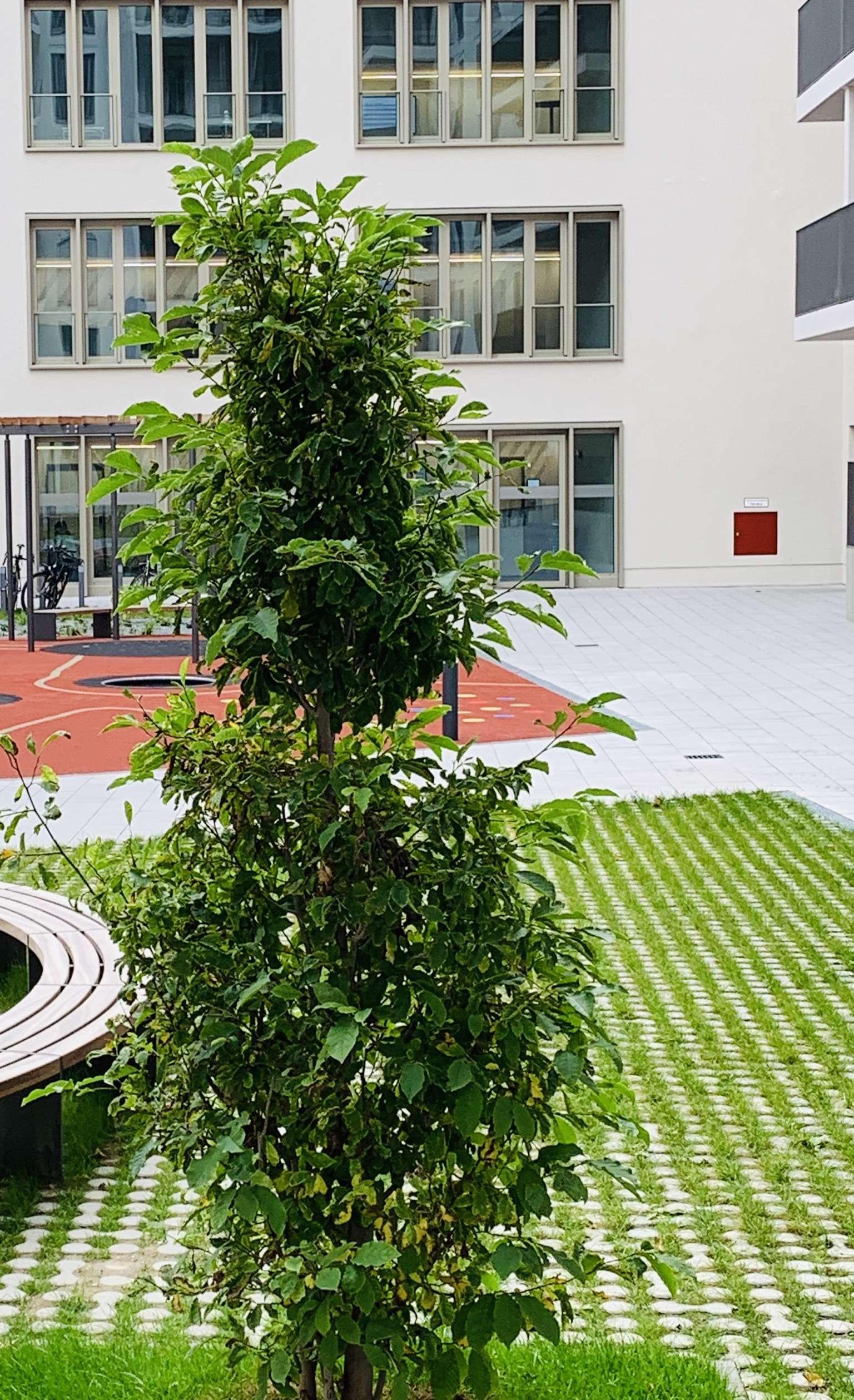2-Zi Neubauwohnung in Bestlage, zentrumsnah in Haidhausen (München)