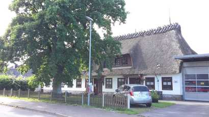 Halle Wees
