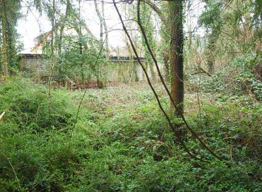 DIE Gelegenheit! Großes Grundstück mit besonderem Flair für Anwesen oder Haus in der Natur