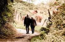 Invest Senioren-Pflegeheim mit sichere Rendite