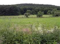 Pferdeliebhaber aufgepasst Aussiedlerhof am Fusse