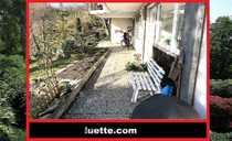Bild Ideal für Gartenliebhaber! (113569_GG) separat zugängliche 3-Zimmer-ELW