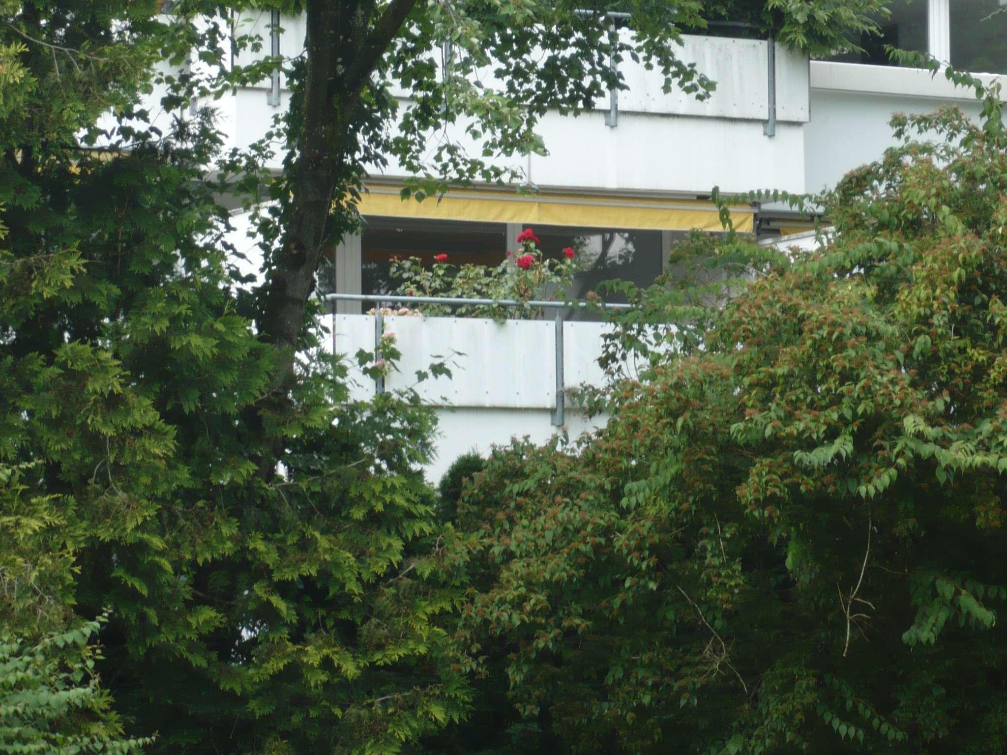 Erstbezug nach Sanierung: exklusive 2-Zimmer-Wohnung mit EBK und Balkon in Haar in Haar (München)