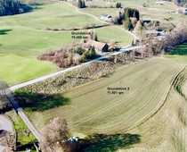 Alter Allgäuer-Bauernhof mit großem sonnigen