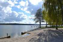 Bild Mecklenburgische Seenplatte! Nur 500 Meter vom Jabelschen See entfernt!!! Ferienwohnung möglich!!!
