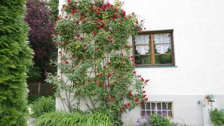 CASACONCEPT Harmonisch möblierte 2-Zimmer-Mietwohnung in Thalkirchner Privathaus mit Garten in Thalkirchen (München)