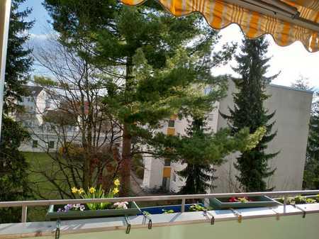 Helle 3-Zi. Whng am Stadtpark , sehr grün und ruhig in Maxfeld (Nürnberg)
