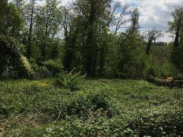 Grundstück im Grünen