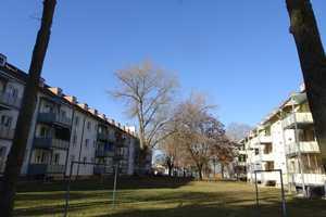 4 Zimmer Wohnung in Straubing-Bogen (Kreis)