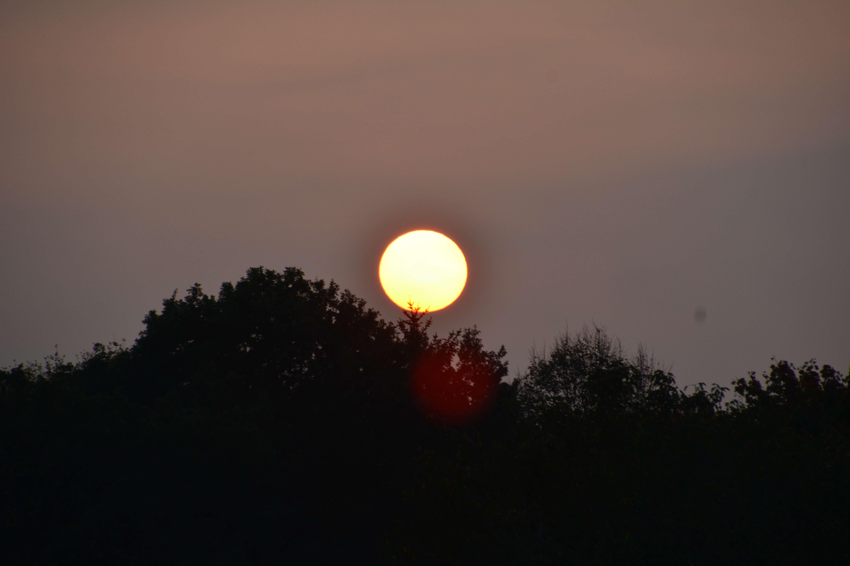 Penthouse in München, Solln mit unverbaubarem Weitblick und täglichem Sonnenuntergang