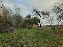 Weitläufiges Grünstück mit Obstbäumen in