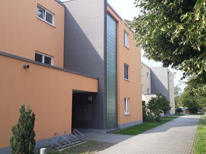 Mietwohnungen Saalfeld-Rudolstadt (Kreis): Wohnungen ...