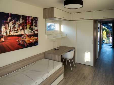 Helles und freundliches möbliertes 1-Zimmer-Business-Apartment in stadtnaher Lage in Nordost (Ingolstadt)
