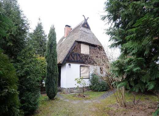 Mitten im Spreewald, attraktives Ferienhaus auf der Kauperinsel, Burg (Spreewald)