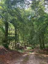 96 ha Eigentumsflächen Wald-Acker-Grünland mit