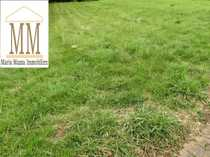 Bezahlbares Grundstück in Lebach OT