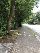 Naturnahes Grundstück direkt im Ortsteil