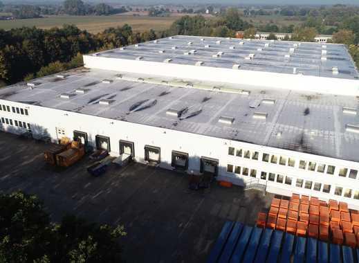 Hochregallager (10 m) in unserem Gewerbezentrum