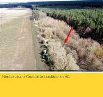 Waldfläche in 17379 Wilhelmsburg