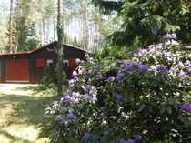 Schönes Wochenendhaus auf Waldgrundstück am