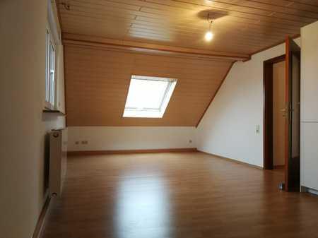 Helle, frisch renovierte DG Wohnung in zentraler Lage/ Mainaschaff in Mainaschaff