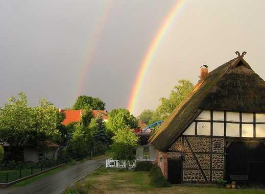 Bauernhaus Oder Landhaus In Mecklenburg Vorpommern Mieten