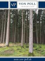 Bild Viel Holz vor der Hütte 4 !!! Vier verschiedene Waldstücke in Laberweinting!!!