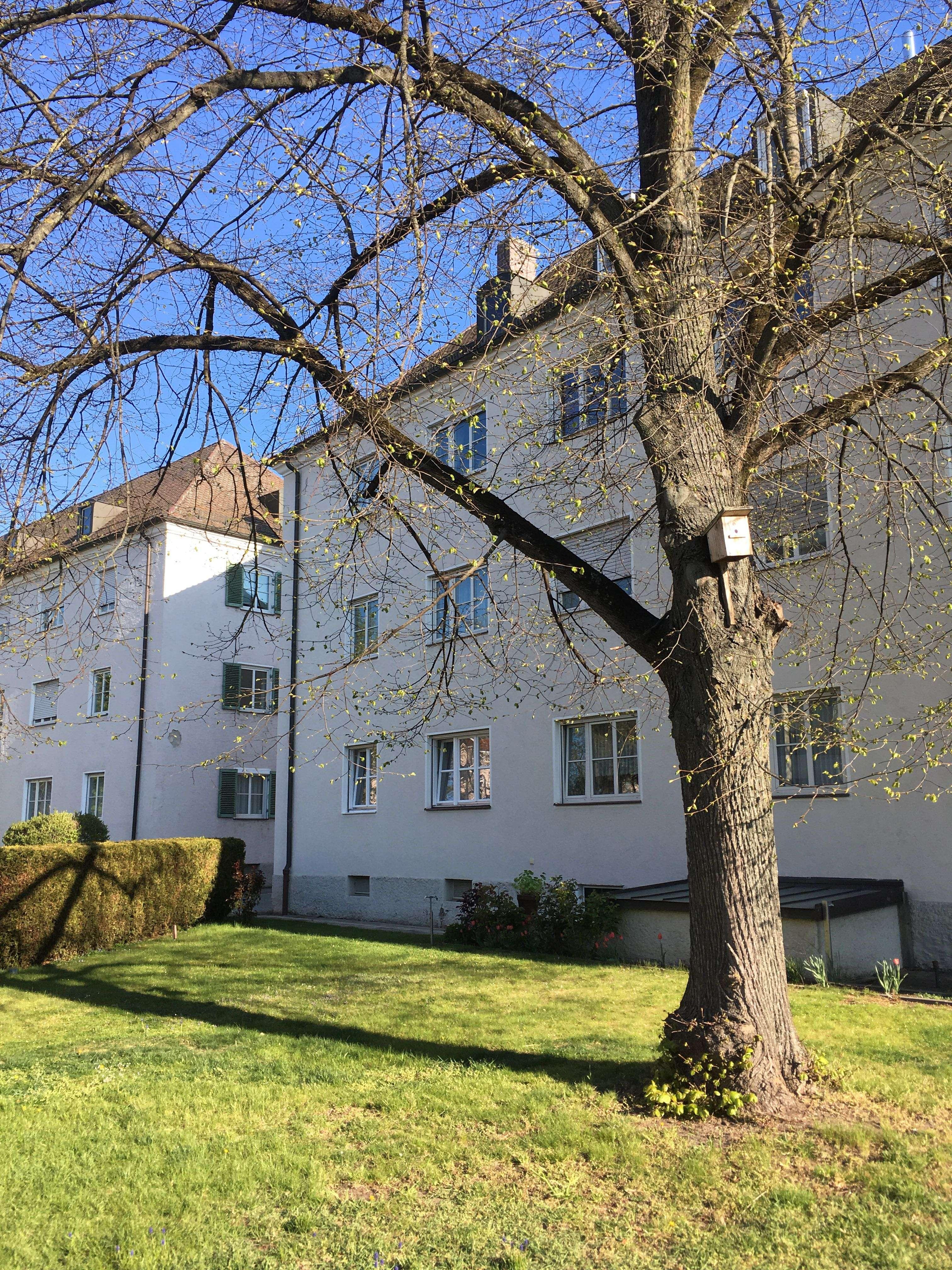 3 Zimmer - Wohnung mit Wohnküche in Regensburg - Ost in Ostenviertel (Regensburg)