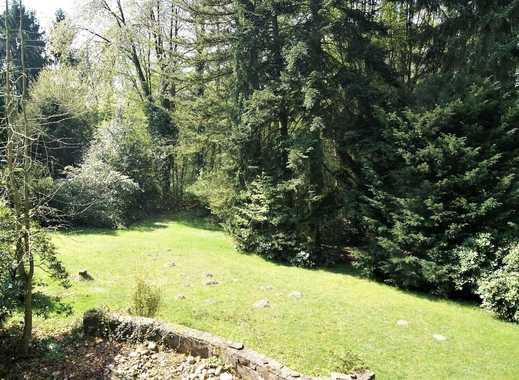 Das letzte freie Grundstück, Südausrichtung und eigener Wald
