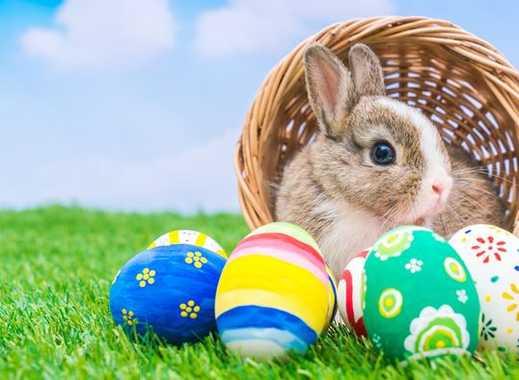 ***Verbringen Sie Ostern in Ihrem neuen Nest***