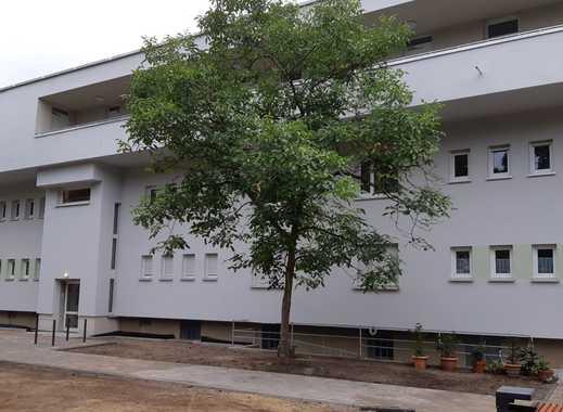 Nur für BASF Mitarbeiter - Neubau, 2-Zimmerwohnung im Limburgerhof