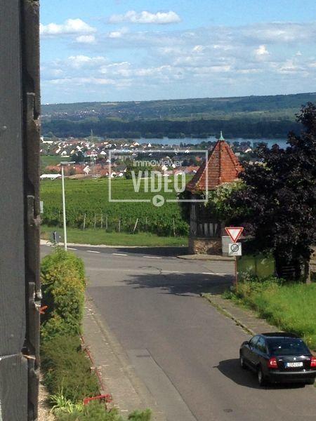 Rheingau mit Wasserblick