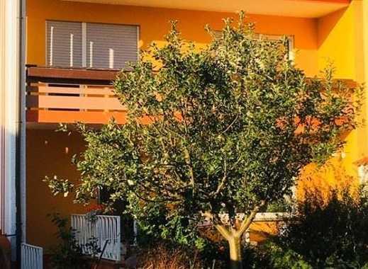 Großzügige 2 Zimmer Wohnung mit Balkon und Einbauküche in ruhiger Wohnlage