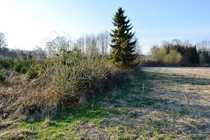 IMMOKONZEPT-NIEDERRHEIN Acker und Waldfläche direkt
