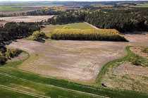 1 32 ha Landwirtschaftsfläche - verpachtet