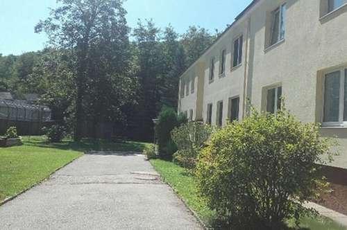 Hirtenberg - sanierte 4-Zimmer Wohnung in Grünruhelage