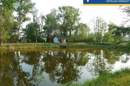 """2 Fischteiche mit """"Bienenhaus"""" auf fast 25.000 m² mit naturbelassenem Wald"""
