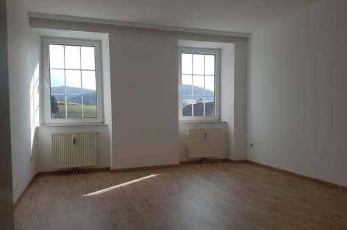 Schöne, nette Wohnung, NEU RENOVIERT; 52 m² in Reichenau/Mks; € 520.- incl. BK