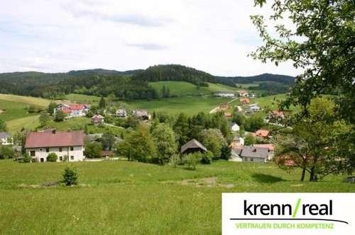 Traumhafte Aussichten! Baugrund in Reichenau