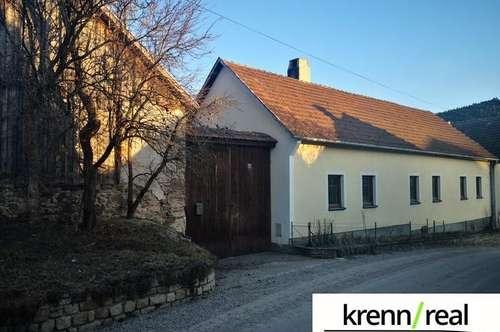 Rustikales Bauernhaus mit landwirtschaftlicher Fläche und Wald