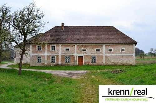 Stark sanierungsbedürftiges Bauernhaus mit großem Grundstück sucht neuen Besitzer