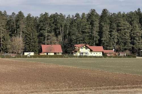 Alleinlage: Anwesen mit 2 Wohnhäusern und Nebengebäuden