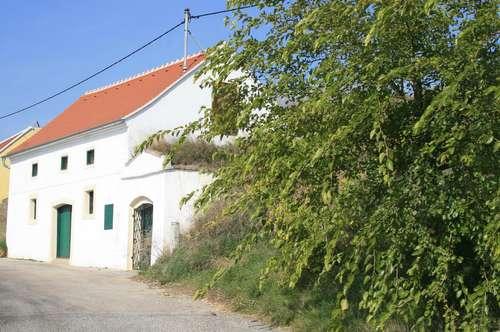 Wunderschöner großer Weinkeller in Bestlage, neues Dach - Liebhaberstück, Krems/NÖ