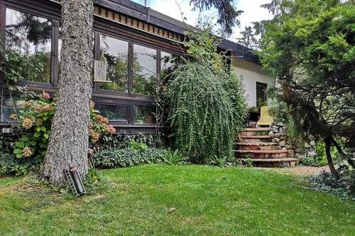 Einfamilienhaus mit Pool in Südlage für einen tollen Preis!