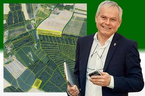 Provisionsfrei für den Käufer* 1,3104 ha Ackerland plus 428 m² Wald