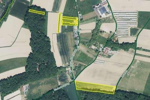 Ihre 1,97 ha Land- und Forstwirtschaft mit Wohn- und Wirtschaftsgebäude