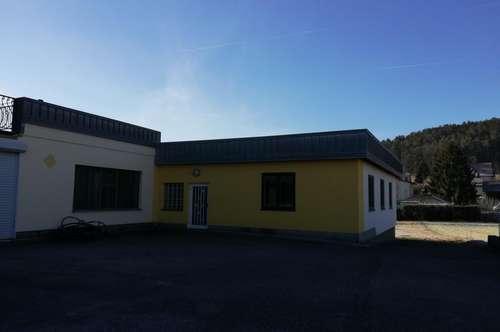 Büroräumlichkeiten mit angrenzender Lager-/Produktionshalle