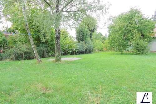 Nähe Napoleonwald/ Zweifamilienhaus/ großer Garten/ Sonnenterrasse!